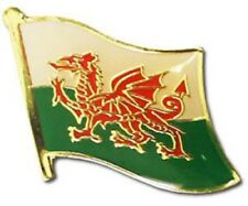 Wales Welsh Country Flag Bike Motorcycle Hat Cap lapel Pin