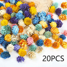 Party Supplies Christmas Dried Flowers Decoration Pine Cone Scrapbooking