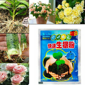 5 Bag Rooting Powder Flowe Cutting Tree Plantsr for Fruit Growth Agent Rapid