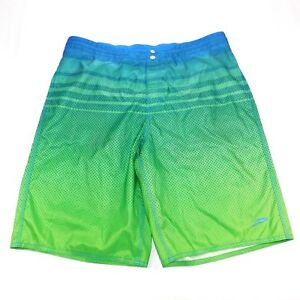 Speedo Ombre Board Shorts Swimming Trunks, Medium