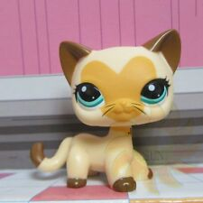 Littlest Pet Shop LPS Loose Toy #3573 Cream Yellow  Heart Face Beard Cat