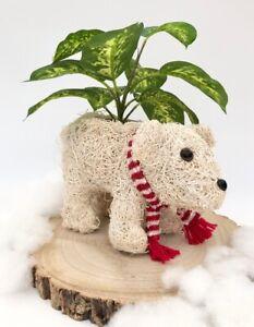 White Rattan Polar Bear Planter Flower Plant Pot Christmas Garden Decoration