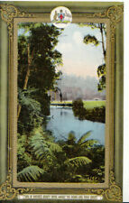 Australia Postcard - One of Nature's Beauty Spots Amidst - The Trees - Ref 8926A