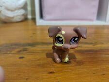 Jack Russell Terrier Puppy Brown Yellow Purple Eyes Littlest Pet Shop 5cm