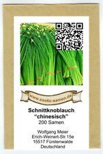 Buchu  001374 Schnittknoblauch 180 Samen Schnittknoblauch