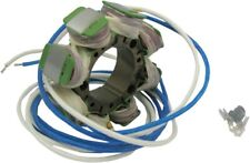 Rick's Electric Motorcycle Stator - Honda CR125 CR250 21-633