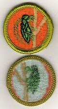 Insect Life Merit Badge, Type H, Blue Back Version (1972- 2002), Mint!