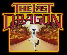 80's Kung-Fu Classic The Last Dragon Poster Art custom tee Any Size Any Color
