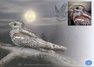 Estonia Birds on Stamps 2019 FDC Nightjar Bird of Year Nightjars 1v Set