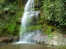 Finca, 27 ha mit Haus, Wasserfall, Regenwald und Pferdestall