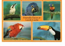 Nice card depicting The Aviary, Leeds Castle, Maidstone, Kent