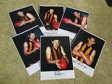 1966 FLAG SERIES HAWTHORN TEAM SET HAND SIGNED  / LTD EDIT / PHOTO PROOF