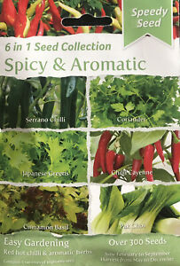 6 in 1 Spicy & Aromatic 300 Seed Collection Seeds Chilli Basil Coriander Greens