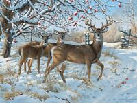 "Puzzle ""Cerf D'Hiver"" - 1000 Pièces - Cobble Hill/Outset Media - Neuf Blister"