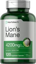 Lions Mane Mushroom Extract   4200mg   120 Capsules   Vegetarian   by Horbaach