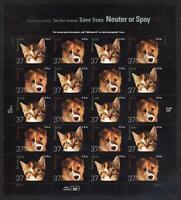 SCOTT 3670-71 2002 37 CENT NEUTER & SPAY ISSUE MNH SHEET VF CAT $20!