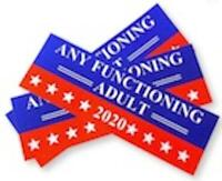 2 ANY FUNCTIONING ADULT 2020 POLITICAL ELECTION BUMPER STICKER #8005 funny elect