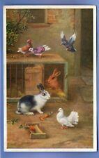 OLD VINTAGE POSTCARD ARTIST SIGNED EDGAR HUNT RABBITS BIRDS DOVE ANIMALS