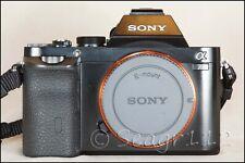 Sony Alpha A7R 36.4MP Digital Camera - Black (Body Only) - Mint - 900 Clicks