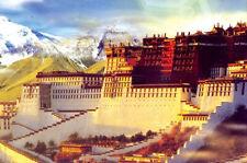 1000 Pieces Adult Puzzle Potala Palace Lhasa Tibet Jigsaw Educational Toys Gift