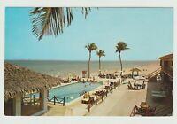 Unused Postcard Tropicana Resort Motel Miami Beach Florida FL Swimming Pool