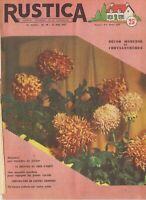 Rustica 19 12/05/1957 Chrysanthèmes Dressage chien d'arrêt