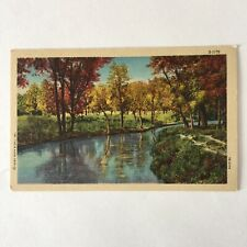 Trout Stream Fall Trees Leaves Landscape Scene Unposted Postcard