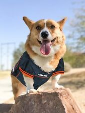 NFL Chicago Bears Pet Jersey. *Officially Licensed* Brand NEW!