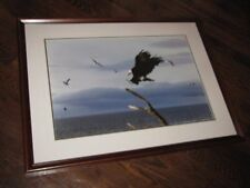 "Thomas Mangelsen ""Along the Coast, Bald Eagle"" Photograph 20x30 90/950 Signed"