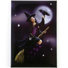Witch On A Broom. Fridge Magnet. Lisa Parker. Women. Fairy and Fantasy