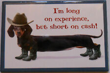 Leanin Tree Magnet Hot Dog Dog, Dachshund Long on Experience But Short on Cash