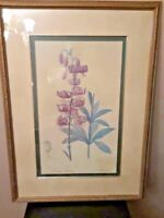 The Bombay Company - Lis Martagon Lilium Martagon -Vintage Framed Wall Art-RARE
