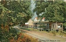 Virginia, VA, TN, Bristol, Big Creek Park 1908 Postcard