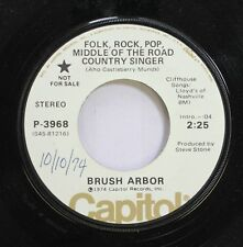 Rock Promo 45 Brush Arbor - Folk, Rock, Pop, Middle Of The Road Country Singer /