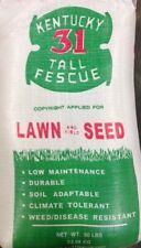 Barenbrug 491145 50 lb Bulk Bag Kentucky 31 Tall Fescue Grass Seed