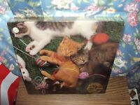 """VINTAGE 1983 KITTENS 550 PIECE JIGSAW PUZZLE BY HOYLE 18 """" X 24 """" IN SHRINK WRAP"""