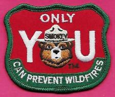USFS US Forest Service 1998 Smokey The Bear Only You Can Prevent Wildfires Patch