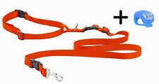 Orange Running Dog Leash Hands Free with LED Light. Walking Running Jogging