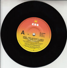 """JEWEL & ARTHUR BLANCH  There's More To Country Than Cowboys 7"""" 45 rpm record NEW"""