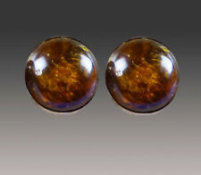 Amber Round Sterling Clip/Post Earrings New Sale-Nwt Amy Kahn Russell African