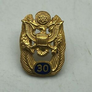 Vintage 30 Year Service Pin Eagle Great Seal US Government Not Sure D6