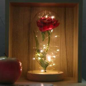Enchanted Rose In Glass Dome Bell Jar LED Light Wedding Party Valentine's Gift