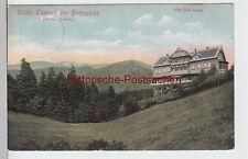 (95385) AK Hohegeiß, Hotel Dicke Tannen, 1912