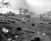 """Helmets discarded by German Soldier Prisoners POW 8""""x 10"""" World War II Photo 443"""