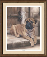 BULLMASTIFF limited edition fine art dog print 'The Guardian' by Lynn Paterson