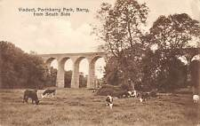 uk12581 porthkerry park barry wales  real photo uk cows