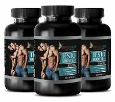 Panax ginseng powder - TESTO BOOSTER 855mg - energy vitamins for men - 3 Bottles