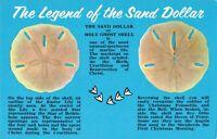 Postcard Legend of the Sand Dollar