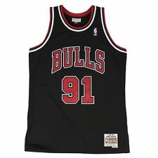 Dennis Rodman Chicago Bulls Hardwood Classics Throwback NBA Swingman Jersey