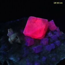 bb: RARE! Fluorite w/ Red Fluorescence from Berbes, Spain - Classic!